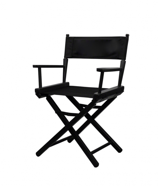 Low Folding Director Chair